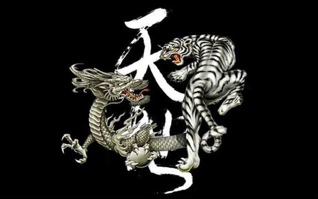 Situs Agen Judi Dragon Tiger Casino Game Live Terbaik Saat Ini